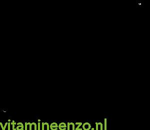 Logo - Vers fruit op het werk_300x300